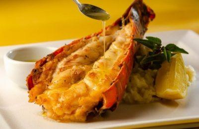 Restaurantes de Praia do Forte, Litoral Norte e Salvador participam da 'Edição Especial 2020 do Tempero'